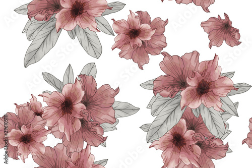 Seamless pattern of red azalea flowers isolate on white background Canvas Print