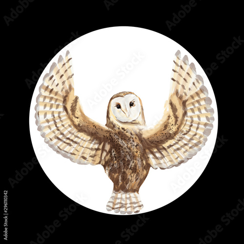 Drawn barn owl with spread wings from the back in a circle isolated Canvas Print