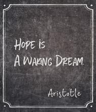 Waking Dream Aristotle