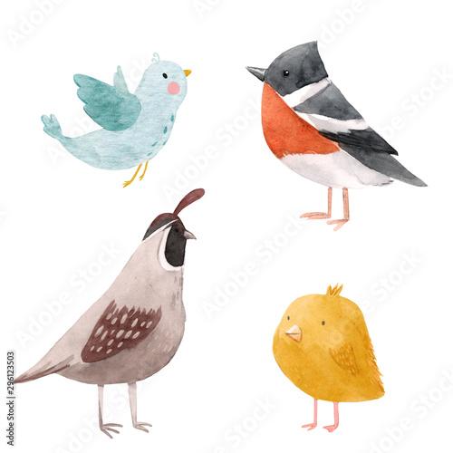 Cute watercolor bird illustration set for children print