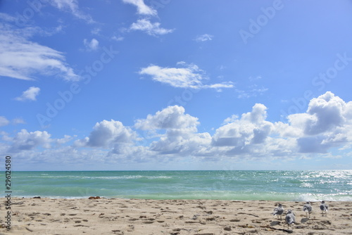 Beautiful Tropical Beach with Blue Sky