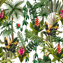 FototapetaSeamless pattern with jungle trees and flowers. Vector.