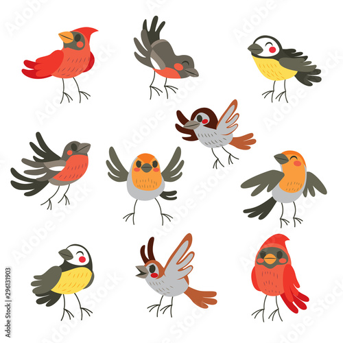Cute collection set of ten funny birds in winter colors Fototapet