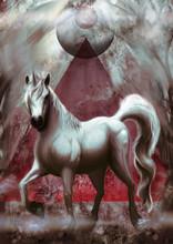 Horse Painting Illustration Art