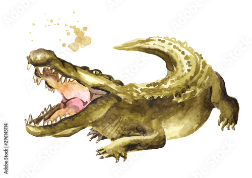 Wild attacker forward crocodile or Alligator with open mouth Wallpaper Mural