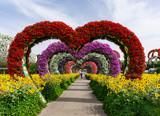 Dubai,UAE / 11. 06. 2018 : Colorful heart shaped flowers alley in Dubai Miracle Garden