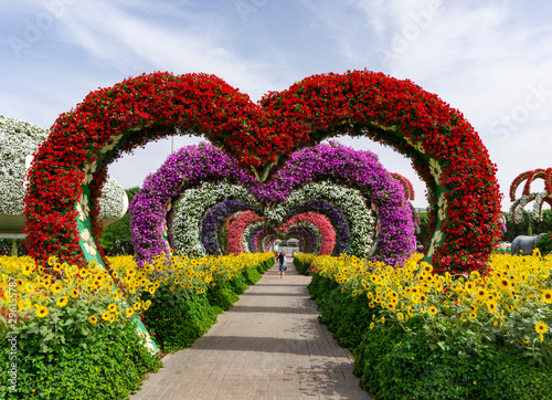 Spoed Fotobehang Tuin Dubai,UAE / 11. 06. 2018 : Colorful heart shaped flowers alley in Dubai Miracle Garden