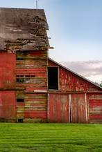 An Old Barn That Is Falling Apart, With Peeling Paint, Missing Boards And Shingles. Blue Sky In The Background And Freshly Mowed Lawn