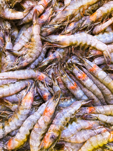 pile of fresh catch shrimp, close view