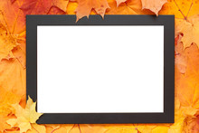 Empty Blank Frame On Autumn Ma...