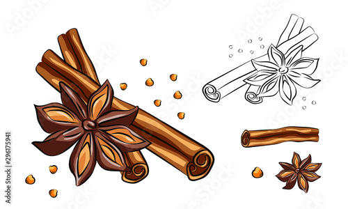 Fototapeta Anise star sketches set. Single, batch and composition with cinnamon sticks. herbs and condiment retro style hand drawn collection. Vector illustrations. obraz