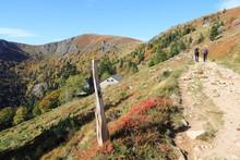 Sentier De La Vallée De Munster En Automne (Hohneck)