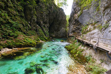 Vintgar Gorge With Clear Turquoise Water Stream Equipped With Wooden Observation Walkways And Bridges Close To Bled, Slovenia