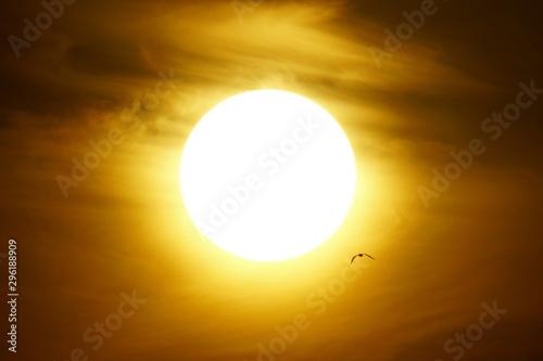 Poster Mer coucher du soleil solar disk malaga andalucia spain
