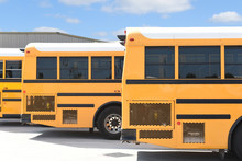 Close Up Of The Rear Third Of Three School Busses Parked In A Lot.