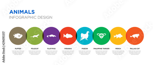 Valokuva  8 colorful animals vector icons set such as pallas cat, perch, philippine tarsie