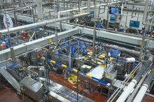 Production Of Dairy Products. ...
