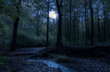 Leinwandbild Motiv In a romantic forest in the middle of Germany, the full moon shines through the trees at night on a babbling brook.