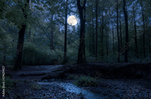 In a romantic forest in the middle of Germany, the full moon shines through the trees at night on a babbling brook Billede på lærred