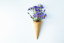 Beautiful Flower In Ice Cream Cone On White Background. Flowers In Waffle Cone. Feel The Taste Of Spring. Minimalism Art Design