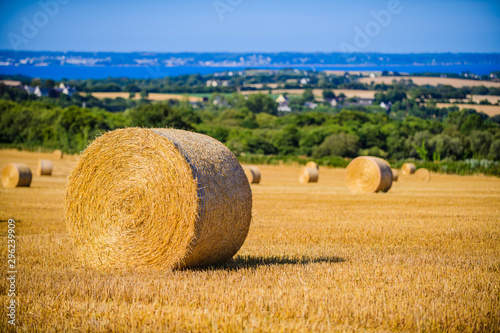 Stampa su Tela Landscape with twisted haystack . Brittany. France