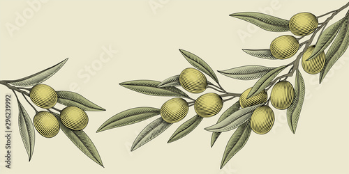 Fotomural  Woodcut style olive illustration