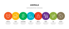 8 Colorful Animals Outline Icons Set Such As Beaver, Bee, Zebra, Beetle, Bird, Blindworm, Boar, Buffalo