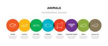 8 Colorful Animals Outline Icons Set Such As Pallas Cat, Perch, Philippine Tarsier, Pigeon, Piranha, Platypus, Polecat, Puffer