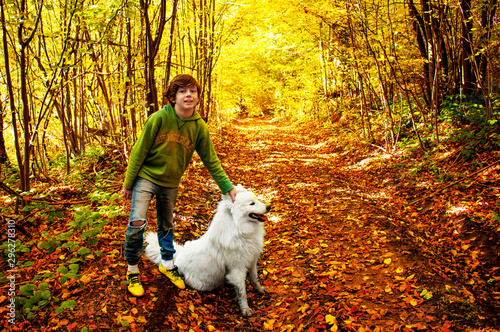 Happy young boy walks with a white husky dog in the autumn fores