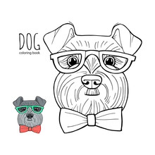 Coloring Book Page Schnauzer. ...