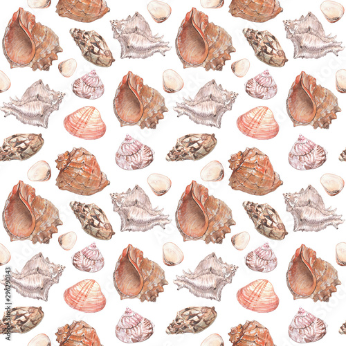 Watercolor illustration of seashells seamless patterns