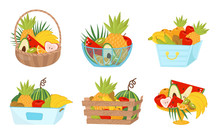 Fruit Basket Wealth Vector Ill...