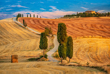 A Fascinating Scenery Of A Valley With Trees And A Path Leading To An Isolated House In The Background. Beautiful Wide Angle View Of Cypress Trees And Curved Dirt Road In Tuscany At Sunset