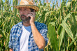Leinwandbild Motiv Farmer talking on mobile phone in corn maize field