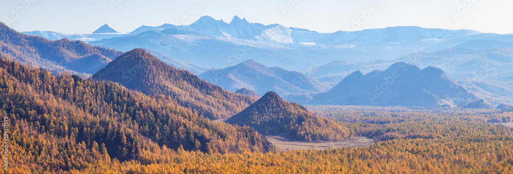 Fototapety, obrazy: Panoramic view of autumn nature. Autumn forest and blue peaks.
