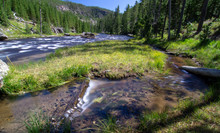 Obsidian Creek River In Yellow...