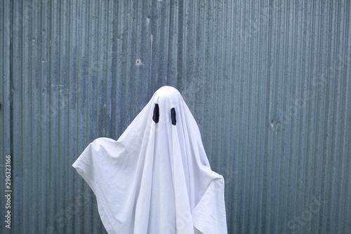Obraz white ghost in front of a garage door - fototapety do salonu