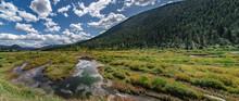 Scenes Around Yellowstone Nati...