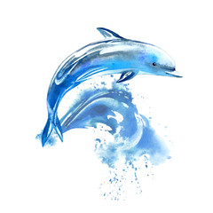 FototapetaBlue dolphin and wave.Watercolor hand drawn illustration. Underwater animal image.