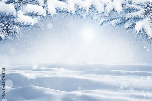 Wall Murals White Winter Christmas scenic background with copy space. Morning Snow landscape with christmas branches covered with snow close-up, sunlight, snowdrifts and falling snow on nature outdoors, copy space
