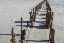 Parallel Row Of Wooden Posts