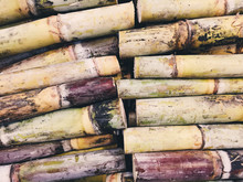Directly Above View Of Sugarcane Stems