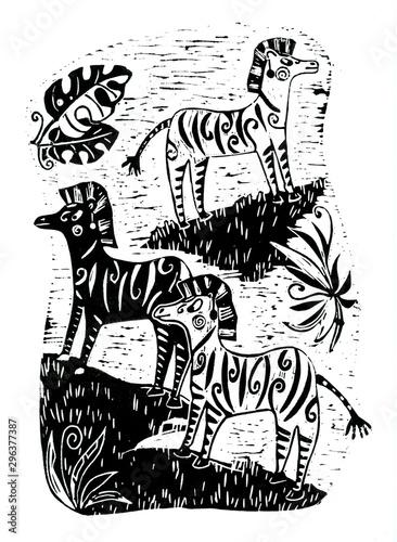 czarno-biale-zebry-na-sawannie