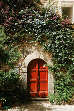 Exterior View Of Door With Creepers