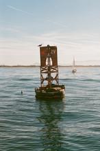 Buoy In Puget Sound