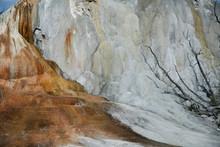 Mammoth Hot Springs Terrace In...