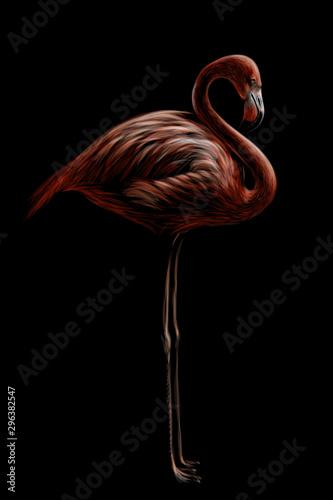 rozowy-flaming-recznie-rysowane-artystyczny-kwiecisty-obraz-flaminga-ptaka-na-czarnym-tle