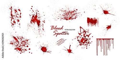 Fotografia  Set of various blood or paint splatters isolated on white background