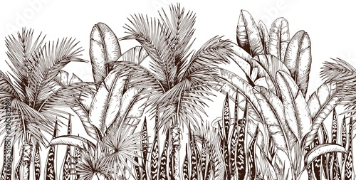 fototapeta na szkło Seamless border with palm trees and snake plants. Sketchy tropical leaves. Hand drawn vector illustration.