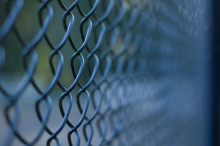 Chicken Wire Fence With Short ...